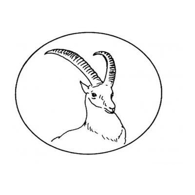 Антилопа - раскраска для детей