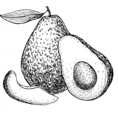 авокадо с глазками