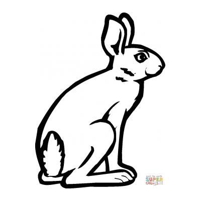 Раскрасить зайца