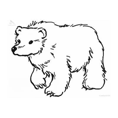Лесной медведь