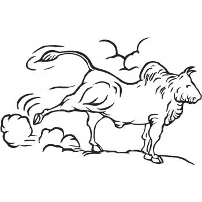 Опасный бык
