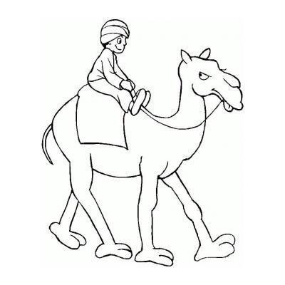 Верблюд - раскраска для детей
