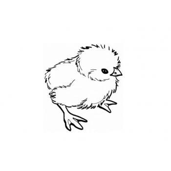 Цыпленочек