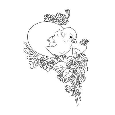 Распечатать раскраску с цыпленком