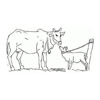 Распечатать раскраску с Коровой