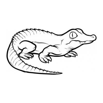 Как раскрасить крокодила
