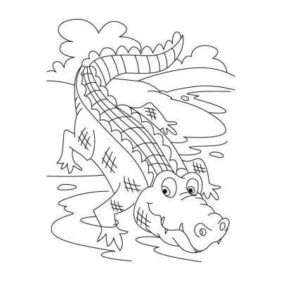 Хороший крокодил