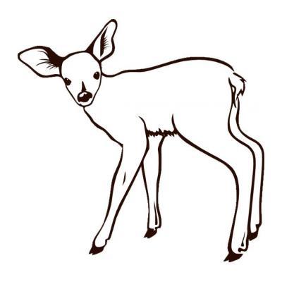 Стройный олень