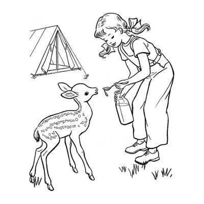 Грациозный олень