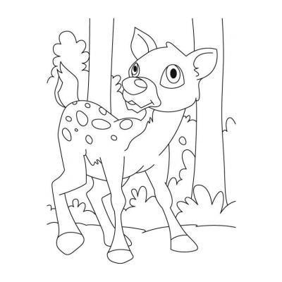 Олень - раскраска для детей