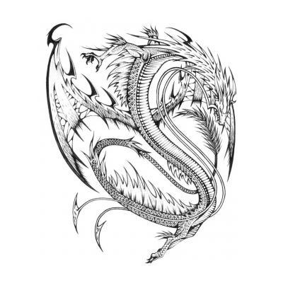 Мудрый дракон