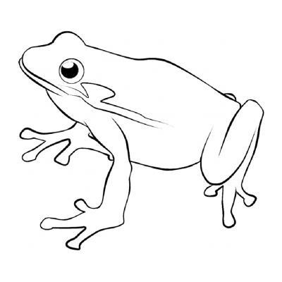Животное лягушка