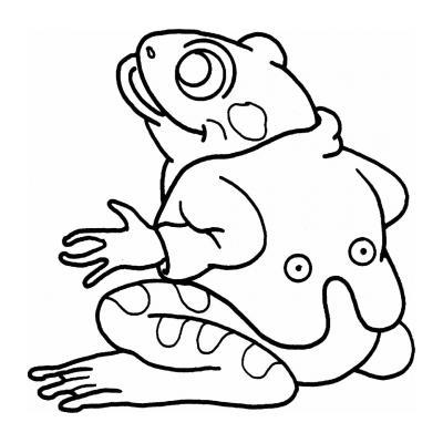 Веселая лягушка