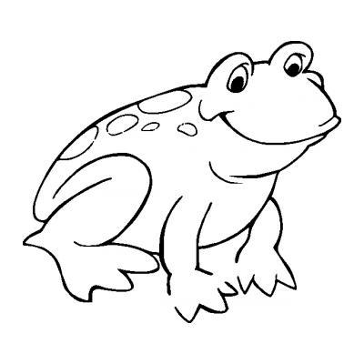 Лягушка попрыгушка