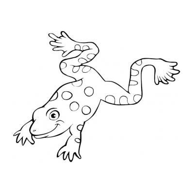 Лягушка - раскраска для детей