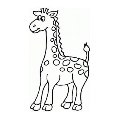 Жираф - травоядное животное