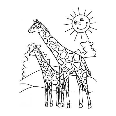 Длинноногий жираф