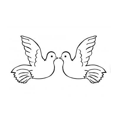 голубь без крыльев