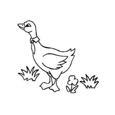 Раскрасить гуся
