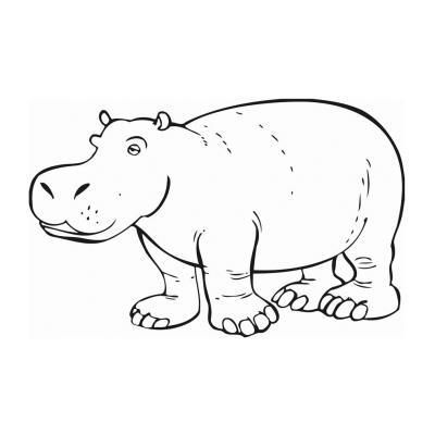 животное бегемот