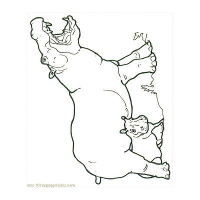Раскрасить бегемота