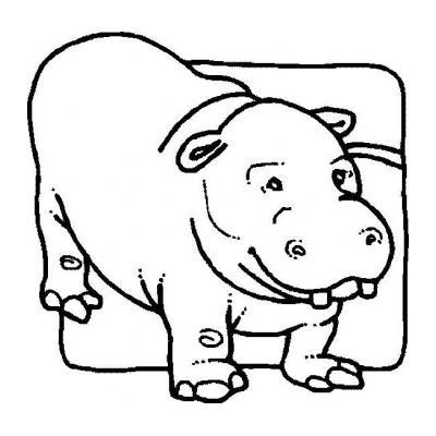 Бегемот - большой живот