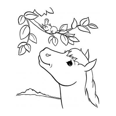 Лошадь скачет
