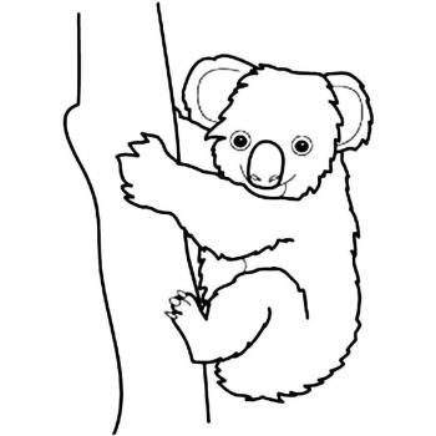 Как раскрасить коалу