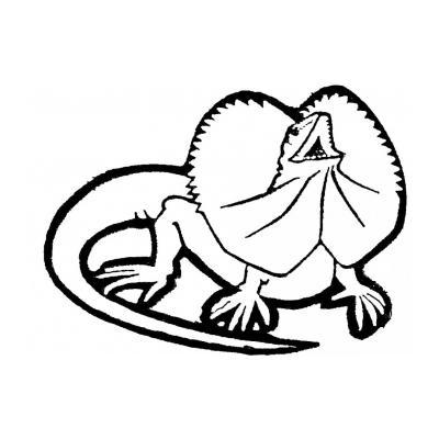 Распечатать раскраску с ящерицой