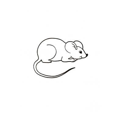 Милая мышка