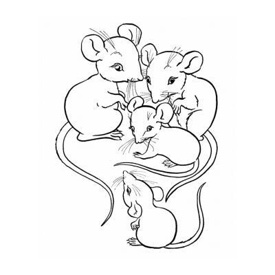 Раскраска с мышкой