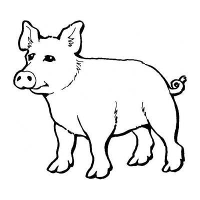 Раскраска со свиньей