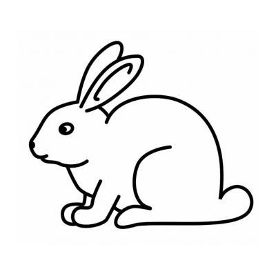 Умный кролик
