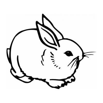 Разукрашка с кроликом