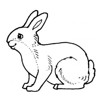 Раскрасить кролика
