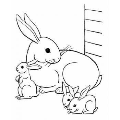 Хороший кролик