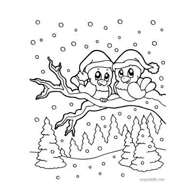 Зимующие птицы - раскраска для детей - распечатать, скачать бесплатно