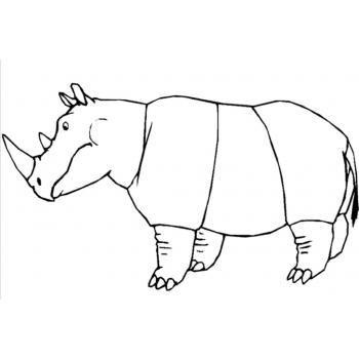 Носорог житель Африки