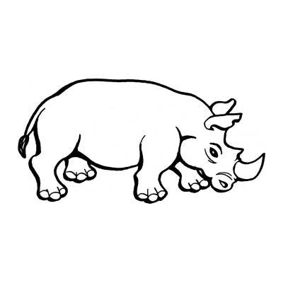 Крупный носорог