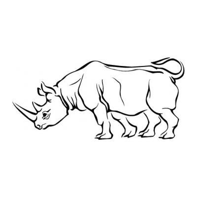 Носорог большой зверь