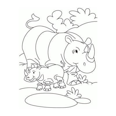 Как раскрасить носорога