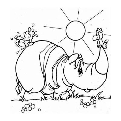 Носорог идет