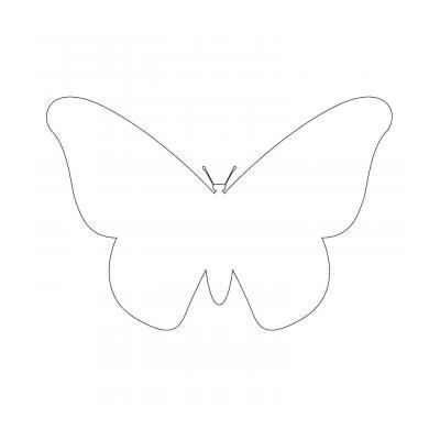 Контуры бабочек