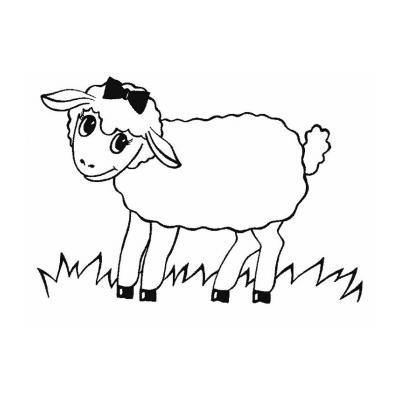 Раскрасить Овечку