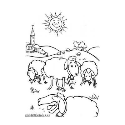 Распечатать раскраску Овца