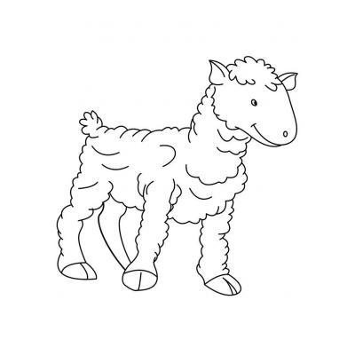 Милая овечка