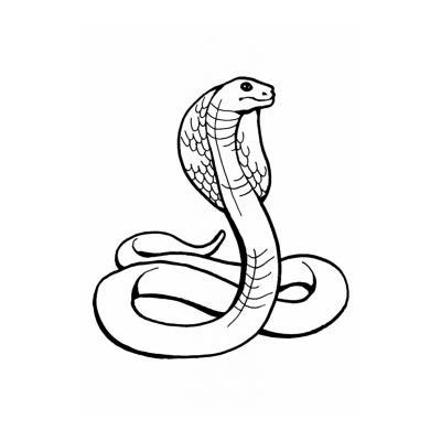 Змея - раскраска для детей