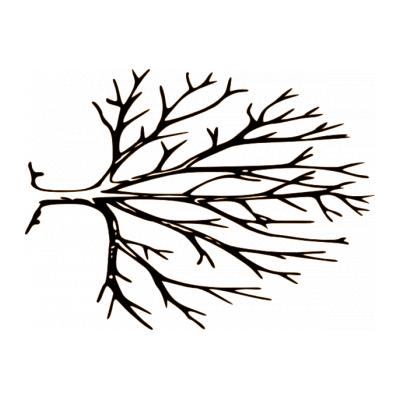 Шаблон дерево для рисунков на стене
