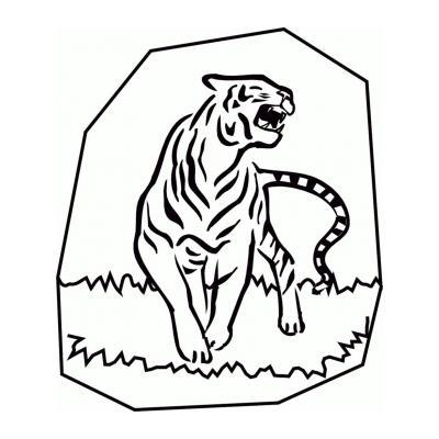 Тигр из семейства кошачьих