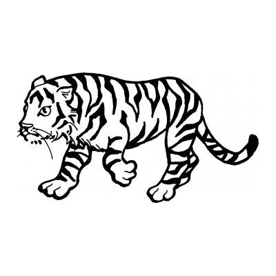 Раскрасить тигра